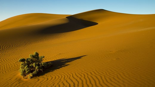 Namibin Aavikko